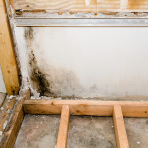 Discover Common Bathroom Remodeling Problems and How to Prevent Them