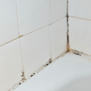 Mold in the Bathroom Isn't Inevitable: How to Prevent It